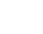 Free, Fair and Alive logo